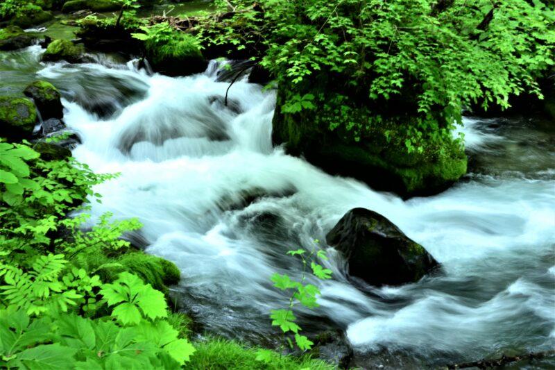 初夏の奥入瀬渓流 の散策!残雪の八甲田から十和田湖へ!