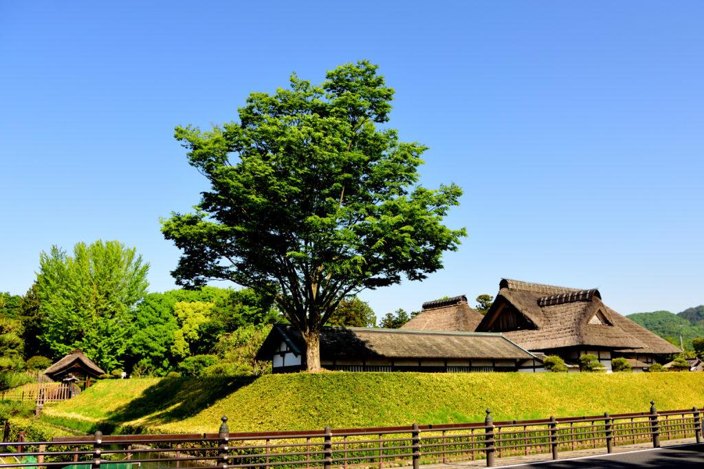 日本最古の学校である足利学校