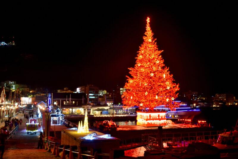 はこだてクリスマスファンタジーの赤いクリスマスツリー