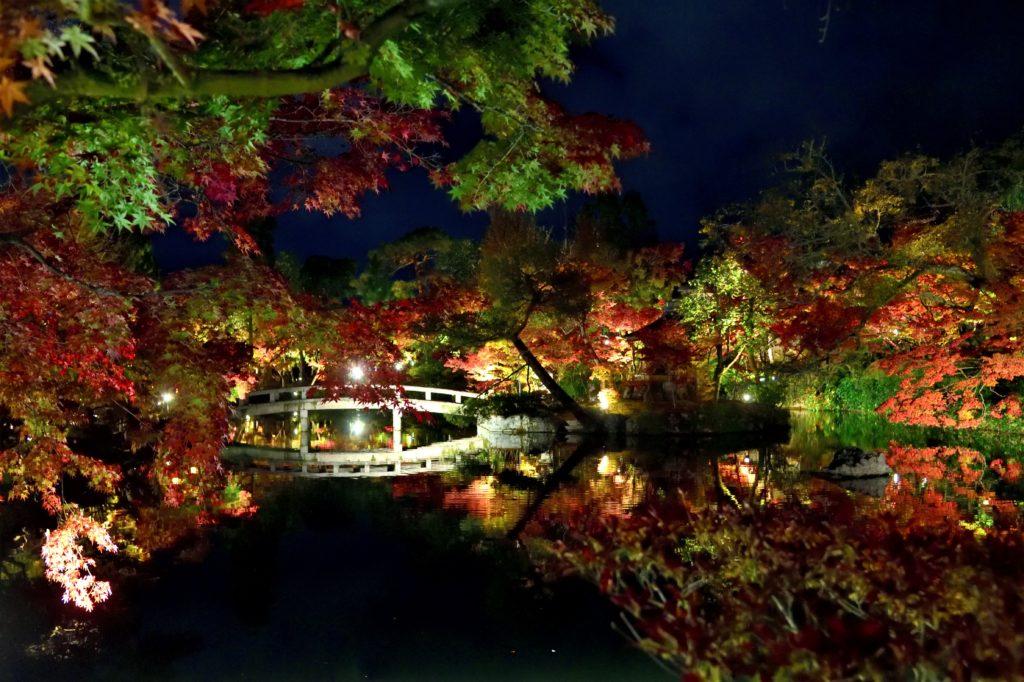 永観堂の紅葉のライトアップ
