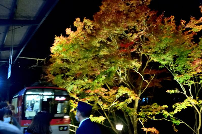 叡山電車のきららと紅葉