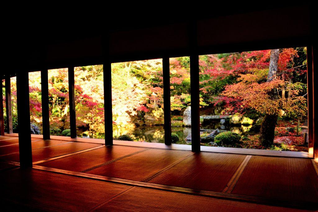 蓮華寺の額縁庭園の紅葉