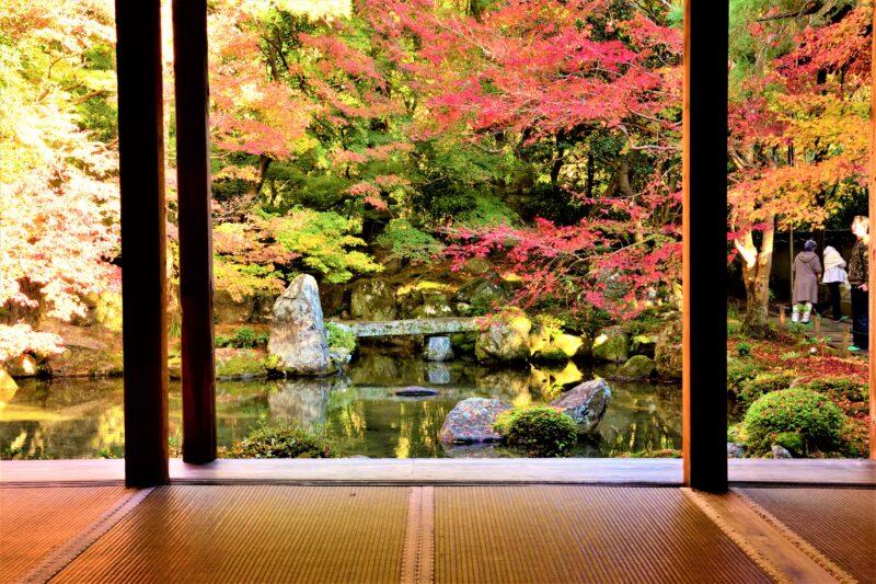 蓮華寺の書院から見た額縁庭園の紅葉