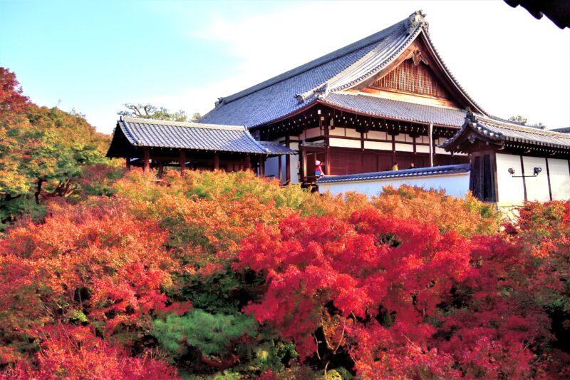 東福寺の洗玉潤と紅葉