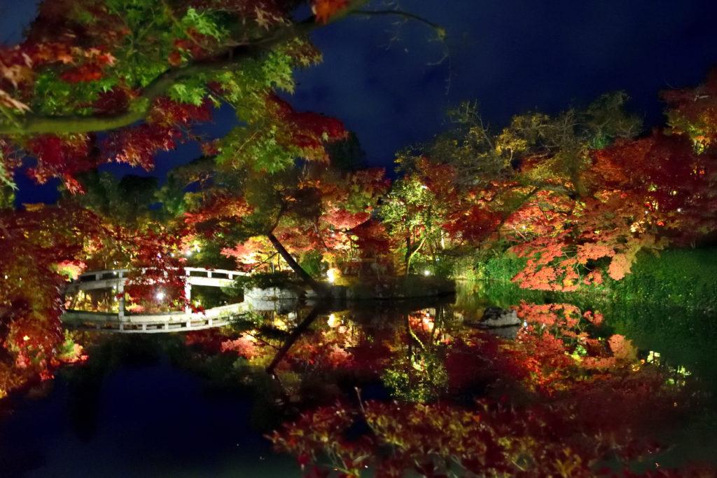 永観堂のライトアップされた放生池と紅葉