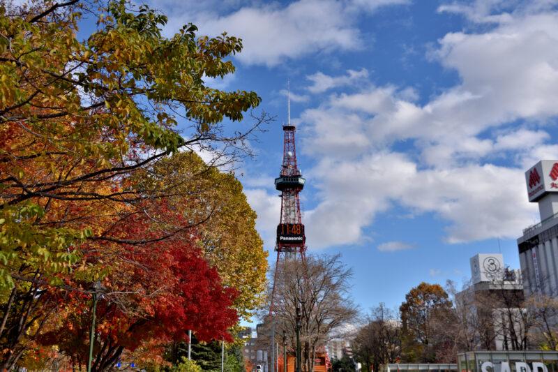 大通り公園の紅葉とテレビ塔