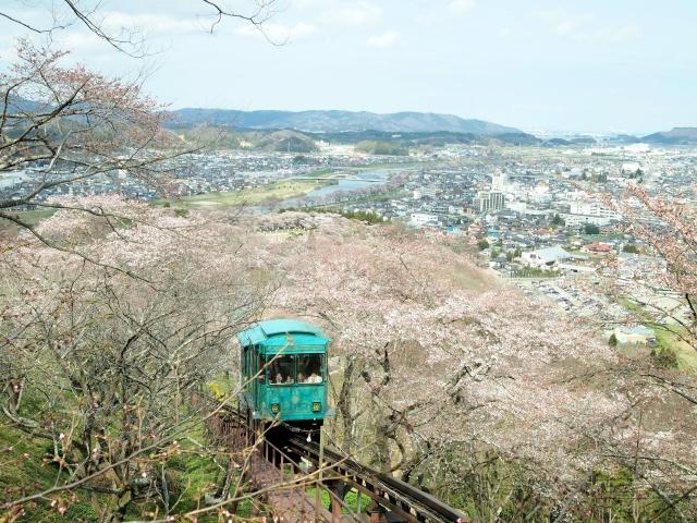 船岡城址公園の桜と電車