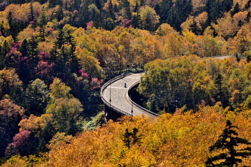 北海道三国峠の紅葉の2021見頃時期や現在状況は?場所やアクセスは?