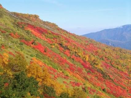 赤岳銀泉台の紅葉