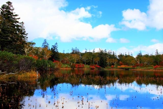 ニセコ・神仙沼の紅葉の2021年見頃時期は?アクセスや駐車場は?
