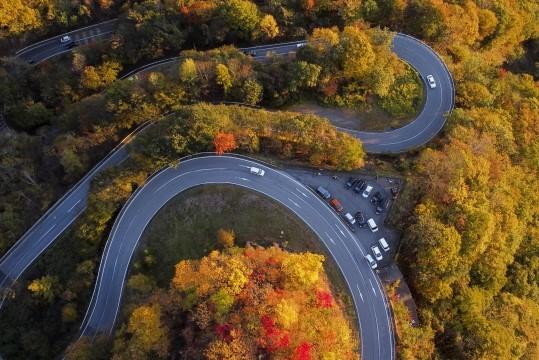 いろは坂の紅葉の2021年見頃や渋滞は?平日の混雑の時間帯や駐車場は?