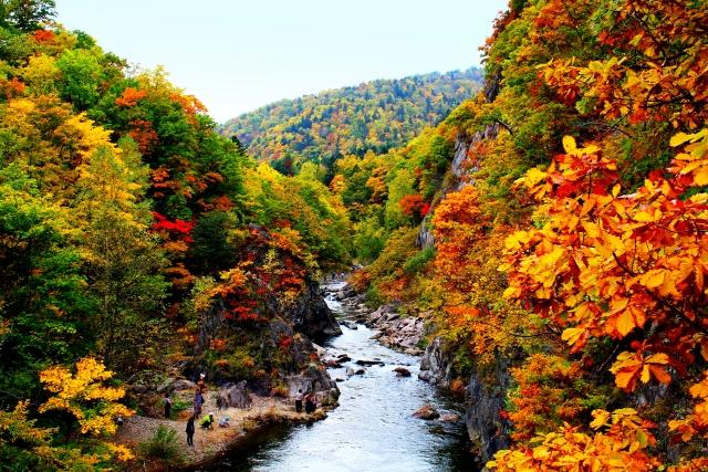 定山渓の紅葉の2021年見頃時期やスポットは?紅葉バスやライトアップやカヌーは?