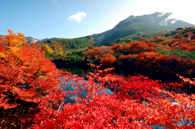 那須岳(茶臼岳)の紅葉の2021年の見頃時期や混雑は?駐車場やアクセス(ロープウェイ等)は?